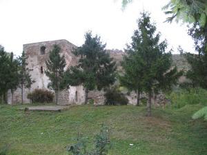 Ruinele Curtii Domnesti Cotnari