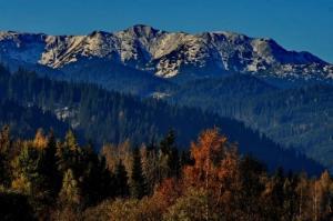 big parcul national muntii calimani